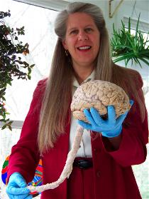 Jill Bolte Taylor showt een brein met ruggenmerg.  Foto: Katherine Domingo